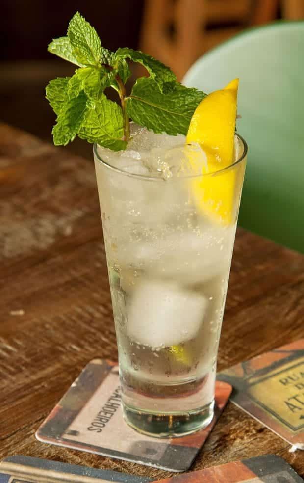 um copo do drink porto tônica